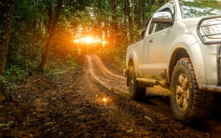 What Are the Best Car Models for Offroad Driving
